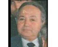 Bilgin, H. Fikri